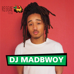 DH-dj madbwoy